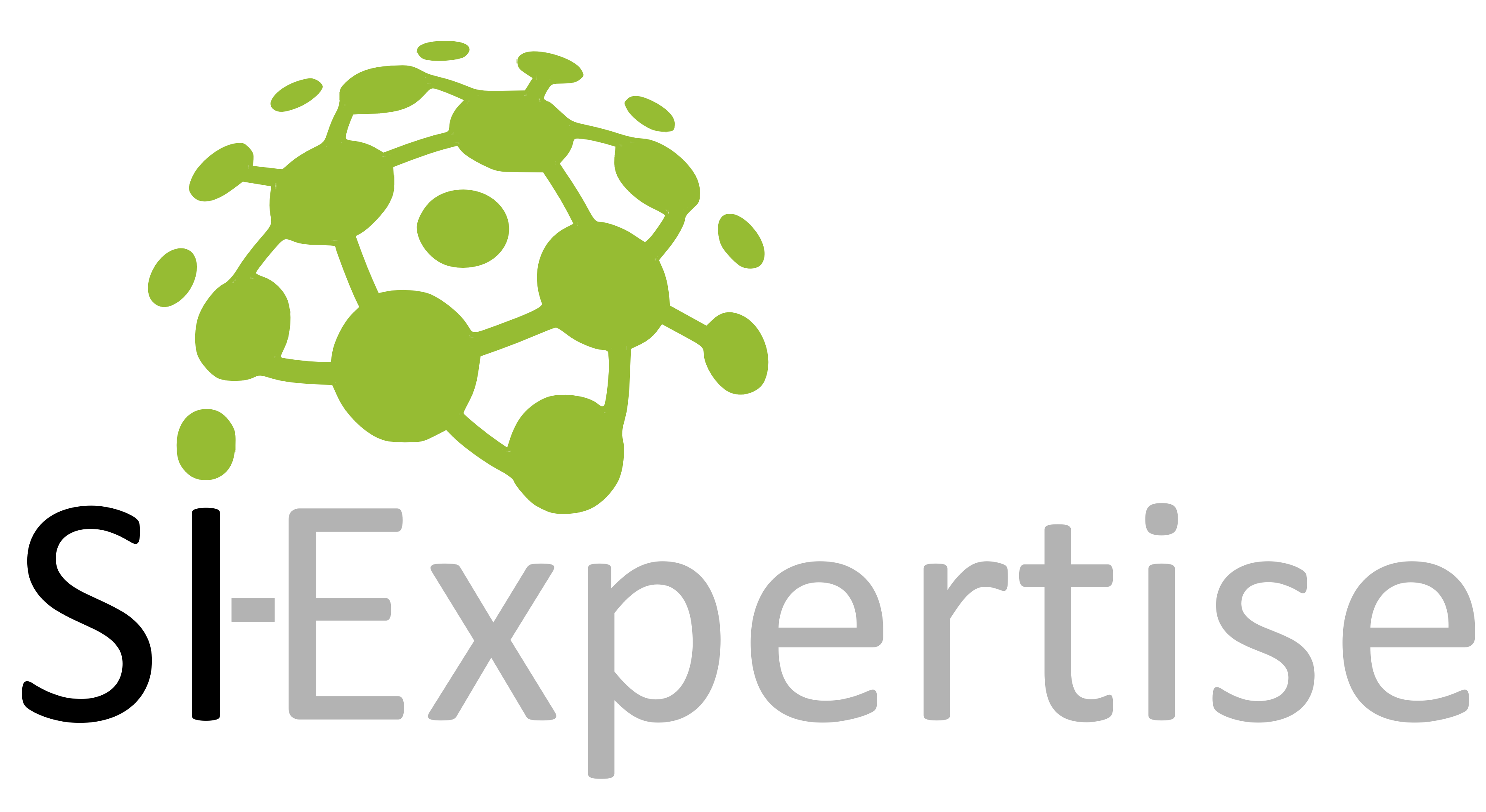 SI-Expertise